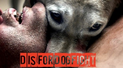 D is for Dogfight