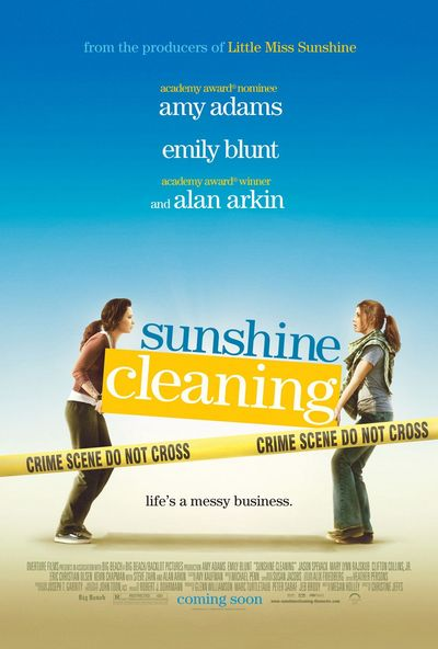 Чистка до блеска (Sunshine cleaning)